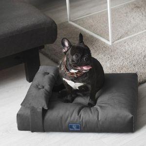 Modern Dog or Cat Bed